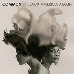 common-black-america-again-cover-by-lorna-simpson