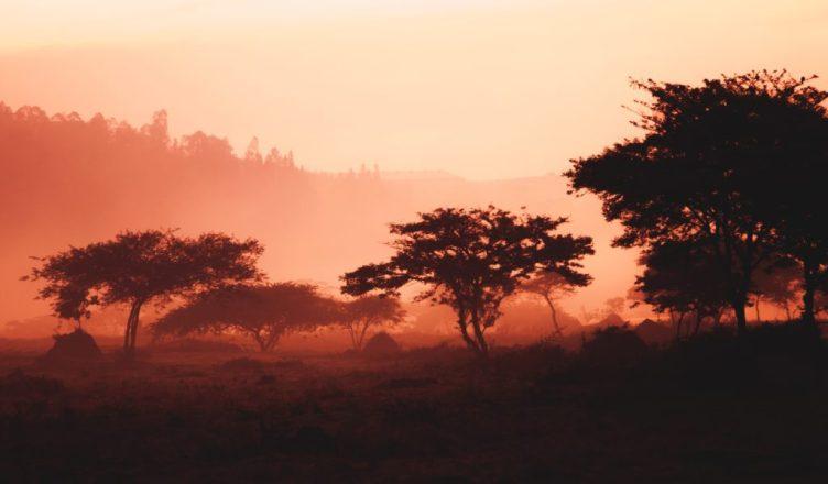 Exploring Rwanda