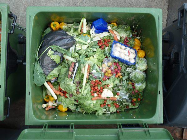 PART II : The Big Waste