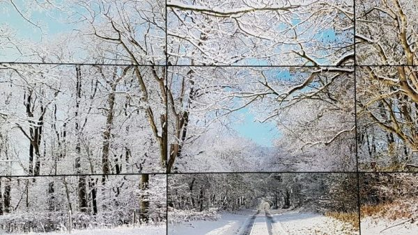David Hockney, The Four Seasons, (lente 2011, zomer, winter, herfst 2010, 36b digitale camera's,