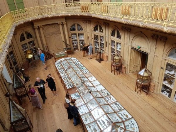 Teylers Museum, ovale zaal nu