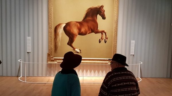 Oog in oog met Whistlejacket,; George Stubbs, c. 1762, doek 292 x 246,4 cm. Londen the National Gallery