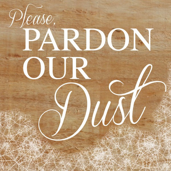 Image result for pardon our dust