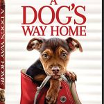 Coming 4/9/2019: A Dog's Way Home (2019)
