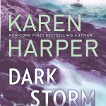 Dark Storm (South Shores) by Karen Harper