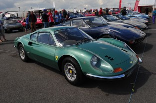 Strangely green Dino 246