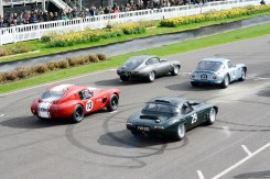 AC Cobra, Jaguar E-Types and TVR Griffith on the grid