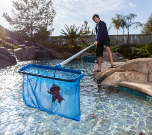 Prepare Your Pool for Fall and Winter Seasons
