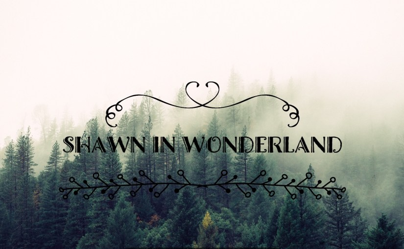 Shawn in Wonderland