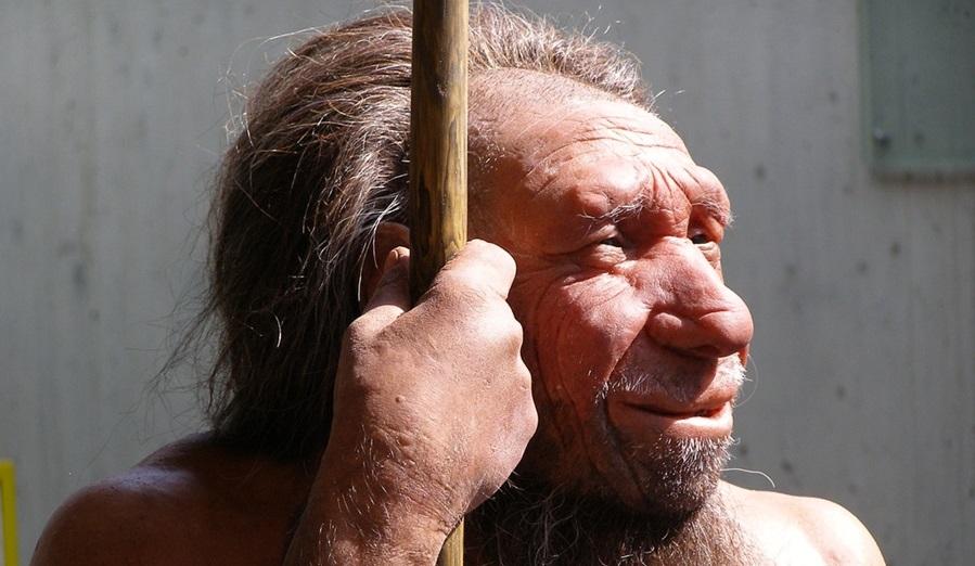 omul de neanderthal 1