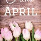 April Is My Month // Spring // April Flowers