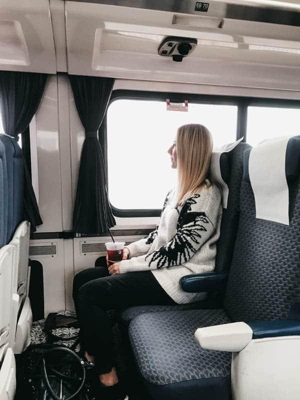 Girl on the Amtrak Pacific Surfliner