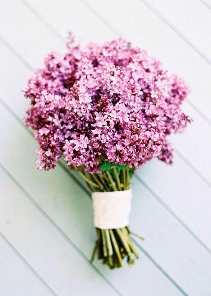 Spring Flowers | www.cupcakesandthecosmos.com