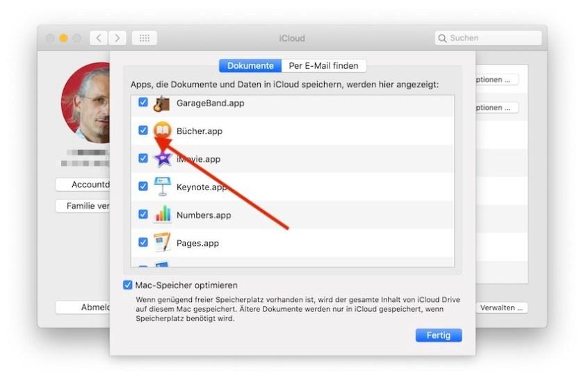 iCloud-Systemeinstellungen Bücher
