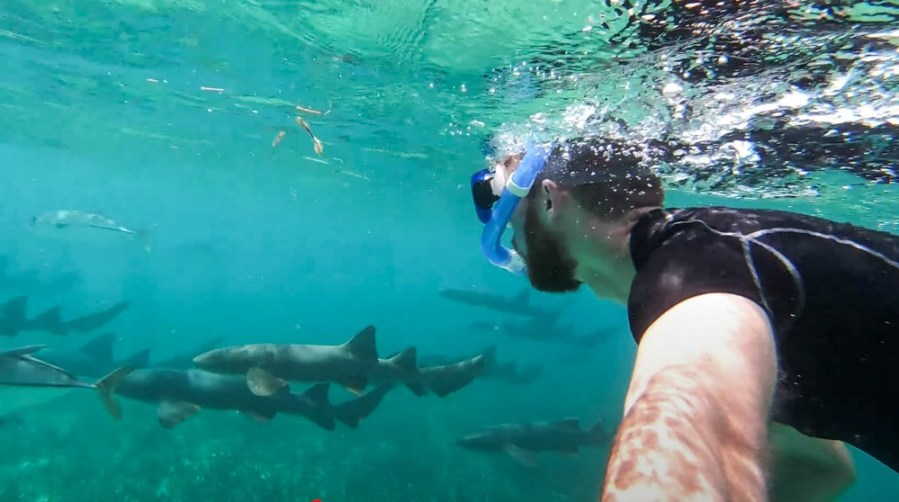 things to do on caye caulker belize snorkel reef