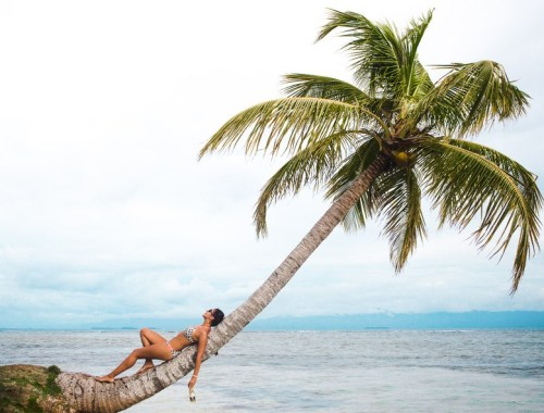 2 weeks backpacking in panama itinerary: san blas palm tree