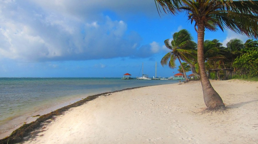 ambergris belize best central american beaches