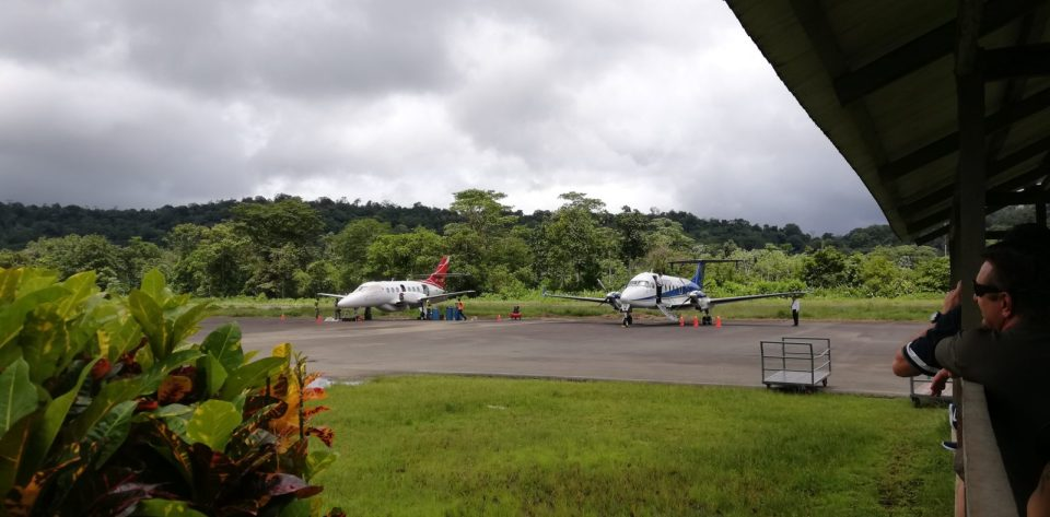 Plane in the jungle: why it's great for having travel on your résumé