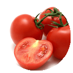 menu-item-base-tomato