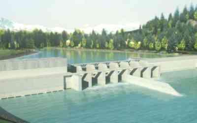 Consulta no vinculante rechaza con un 90,1% la construcción de hidroeléctrica Rucalhue en Quilaco