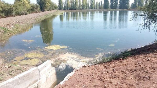 Más de $1.000 millones en proyectos de riego se ejecutarán en el Maule