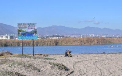 El ministerio del Medioambiente inició el proceso de catastro que buscar declarar a la desembocadura del río Elqui como un humedal urbano
