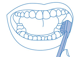 Dentes inferiores