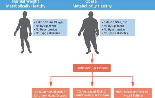 obesity and weight loss (1)