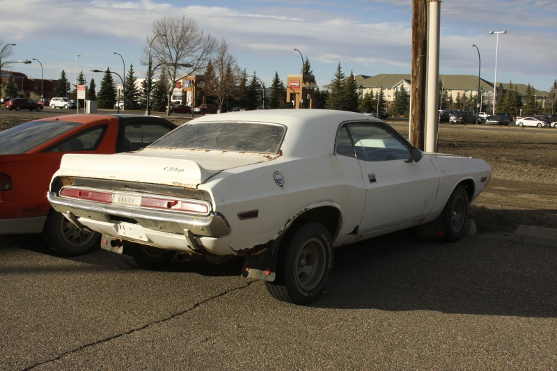 Cheap Car Insurance Alberta >> Curbside Classic: 1970 Dodge Challenger – Vanishing Paint