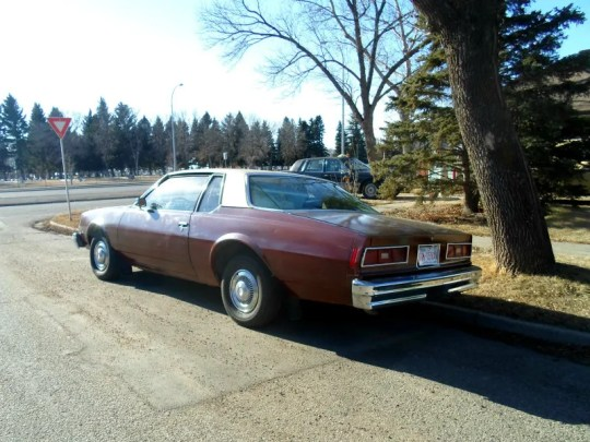 1977 Chevrolet Bel Air rear