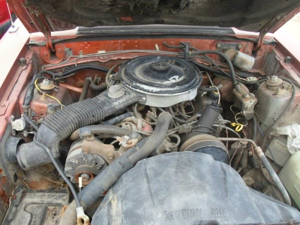 1983 Ford Mustang V6 engine