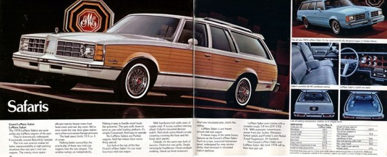 1978 Pontiac-18