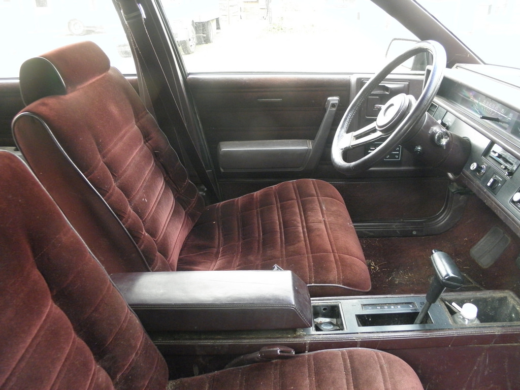 Cohort Capsule: 1985 Chevy Celebrity Eurosport Wagon – A Lesson In ...