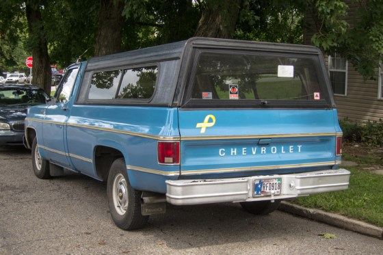1977 Chevrolet C10 b
