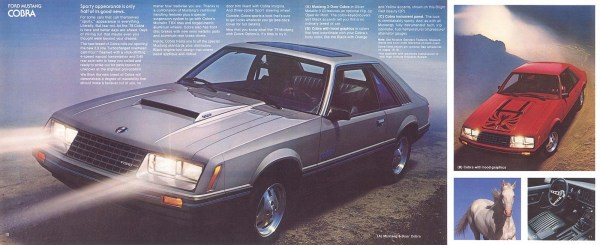1979 Ford Mustang-10-11