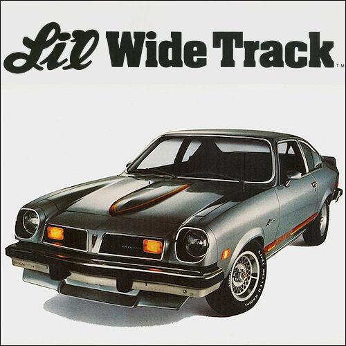 Pontiac 1975 Astre LilWideTrack