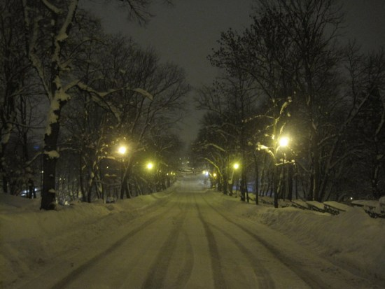 winter road night