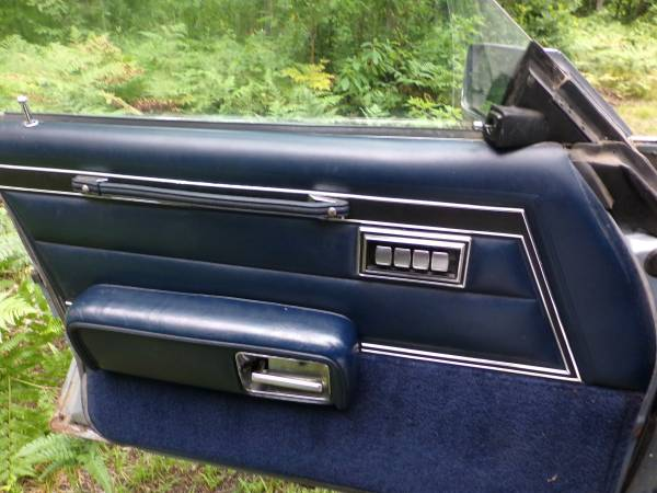 Dodge 1979 St Regis door