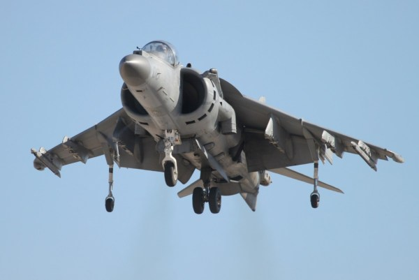 harrier-hovering2