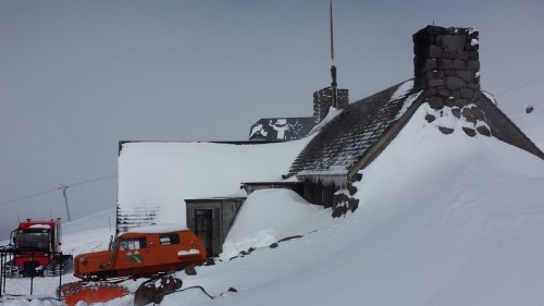"Classic ""Cascade Groomers"" Tucker, at the Silcox Hut"