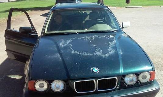 Typical craigslist BMW wagon