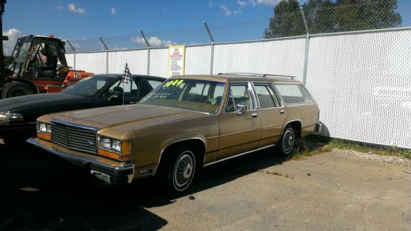 canadiancatgreen 1981 ford ltd