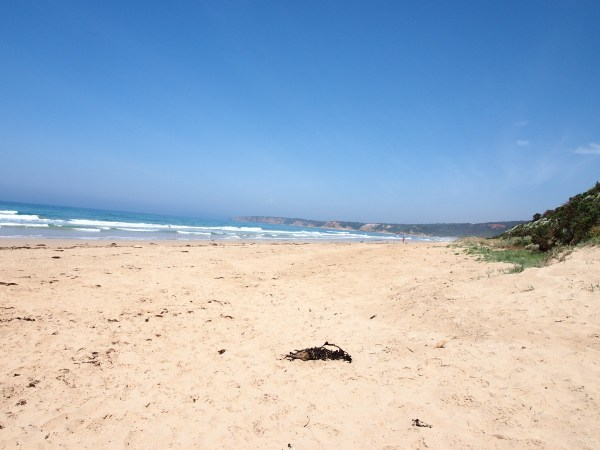 great ocean road (7)