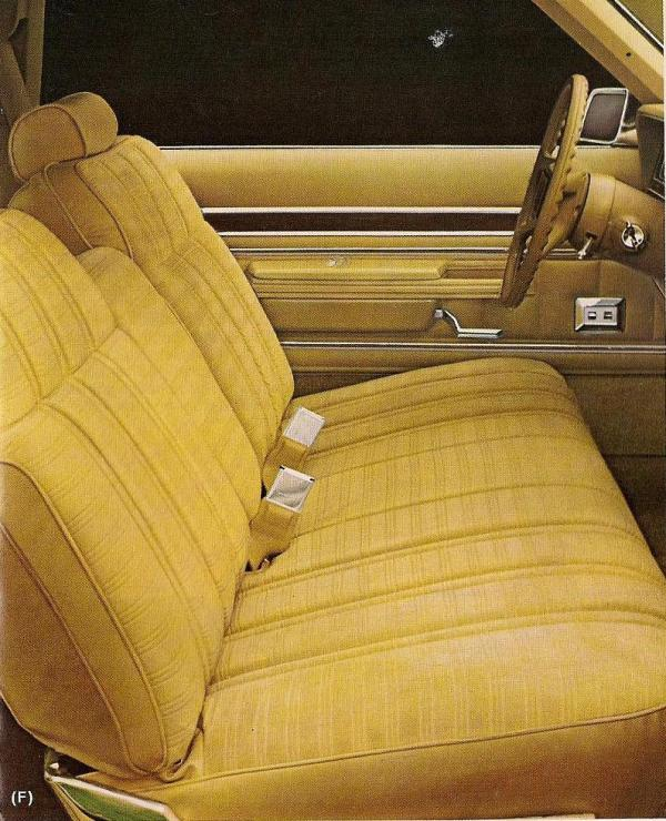 1980 Ford LTD-11-1