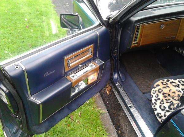 Cadillac 1981 COAL door