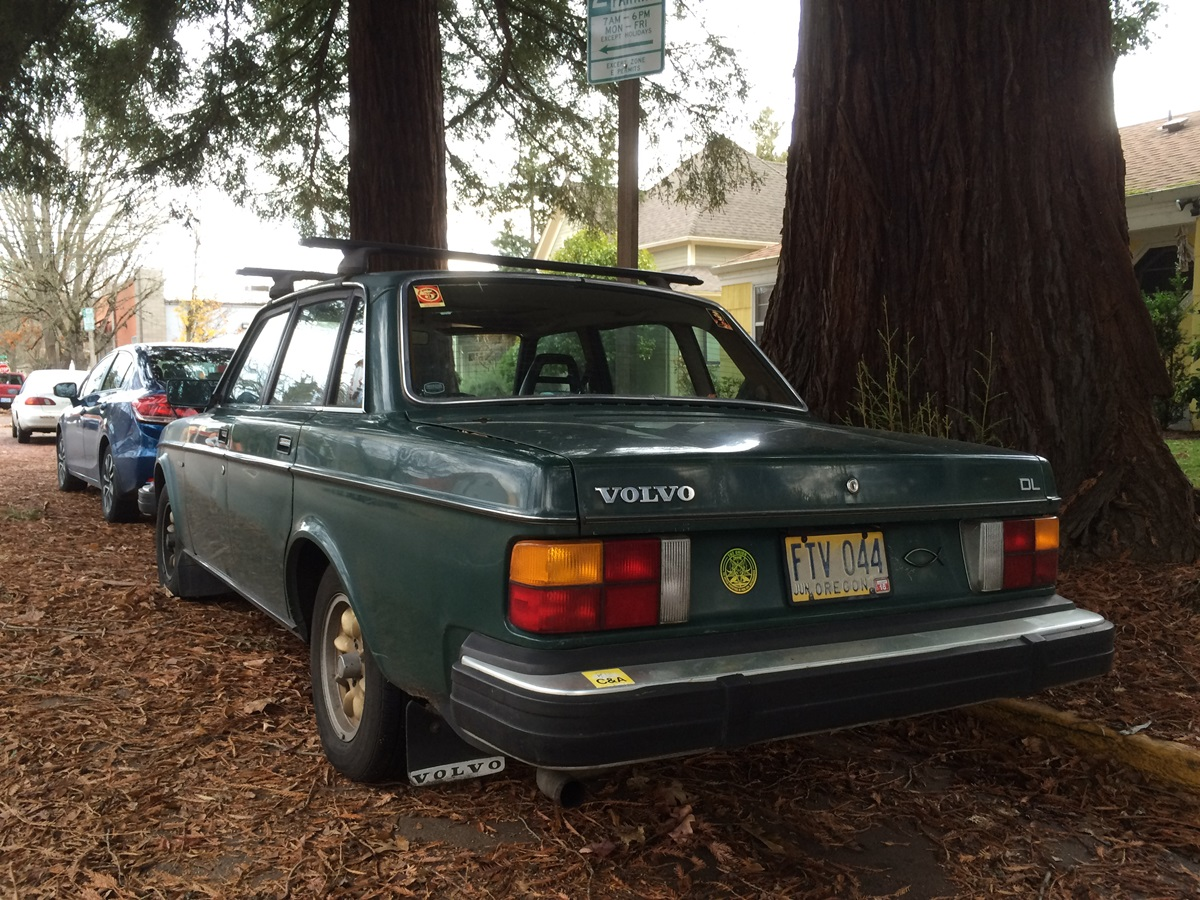 Cc Outtake Volvo 244 Dl As Long Lived A Redwood Tree 240 Flame Trap With All This Talk Of Trees Ive Neglected Nice Old Well What Can I Say About It That Hasnt Been Said Here So Many Times