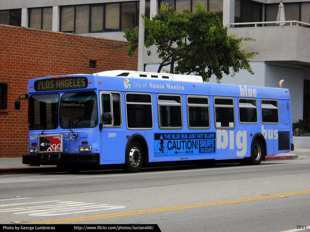 New Flyer Bus Wiring Diagram Opinions About Schematics Diagrams U2022 Rh Parntesis Co Bluebird