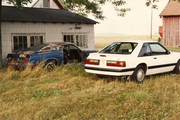 1969 and 1988 Ford Mustangs 2 CC