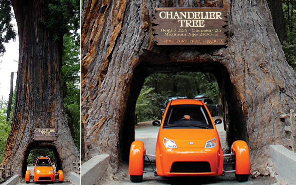 The drive through tree a car spotters delight from parody to pariah the chandelier tree cradles a controversial elio which with its manufacturer deeply in debt at this writing embodied the latest arubaitofo Gallery