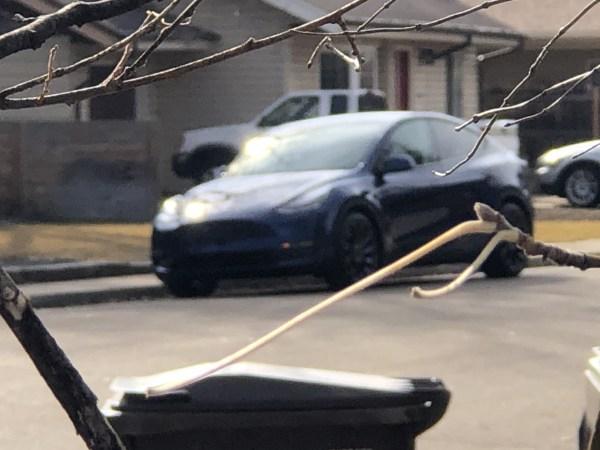 2020 Tesla Model Y Delivery